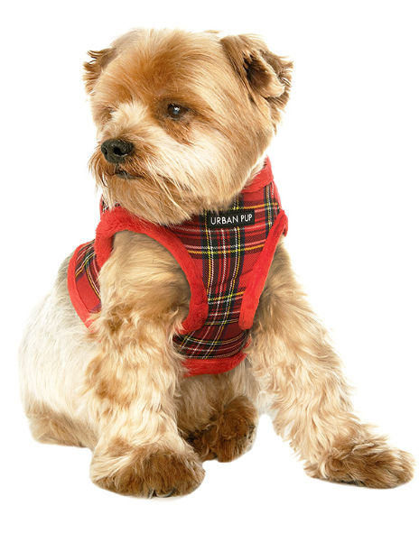Red tartan cosy harness