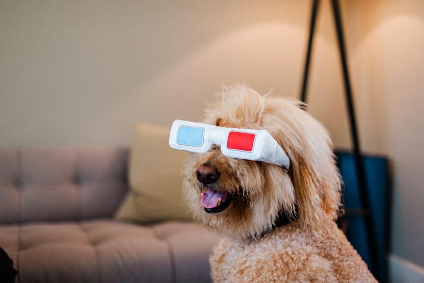 3D glasses toy