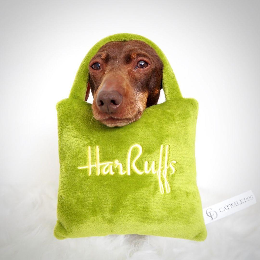 Harruffs toy