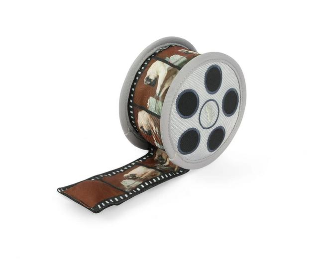 Movie reel toy