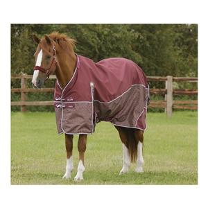 Premier Equine Altus Stratus