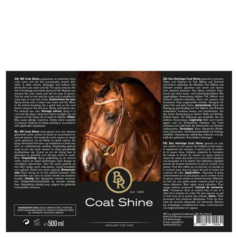 BR Coat Shine 500 ml. spray