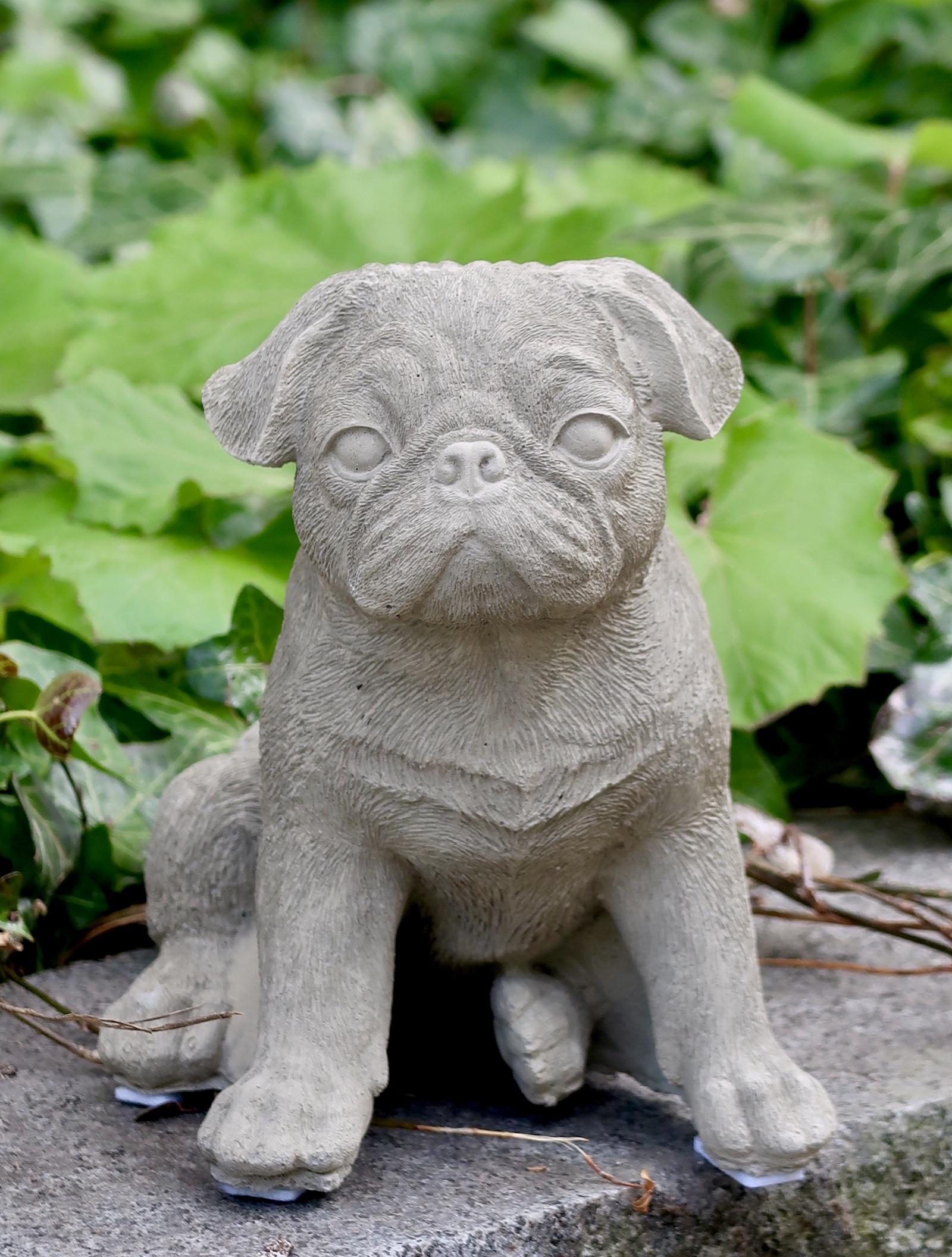 Hund Mops i betong