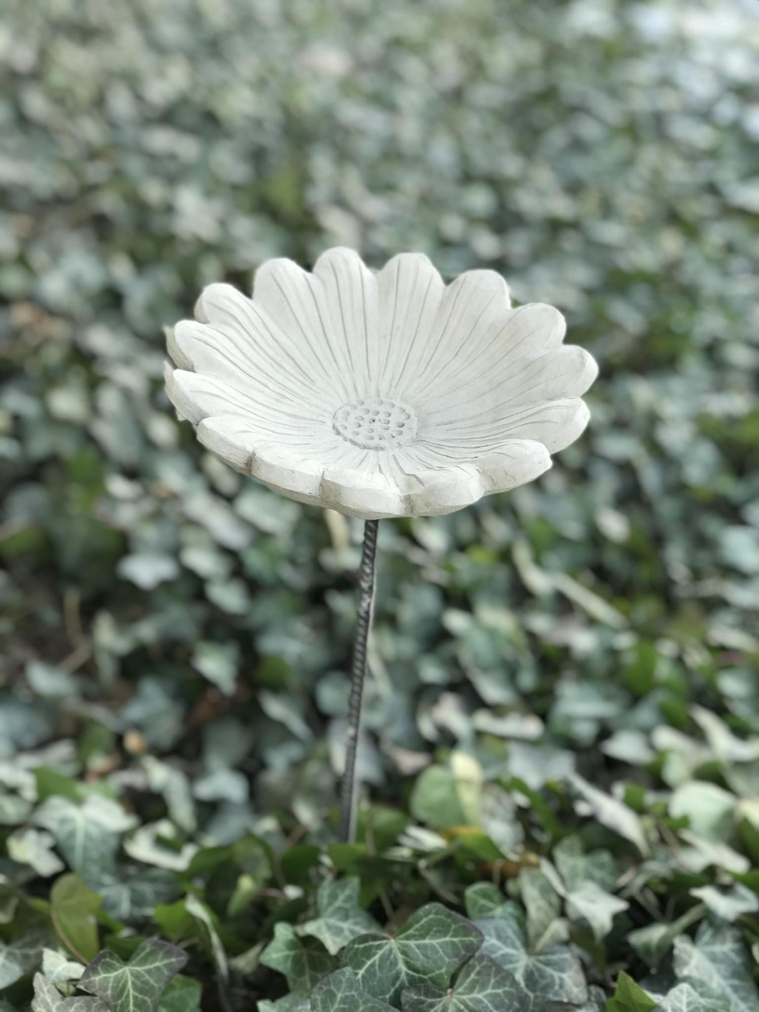 Blomma B på armeringsjärn i betong