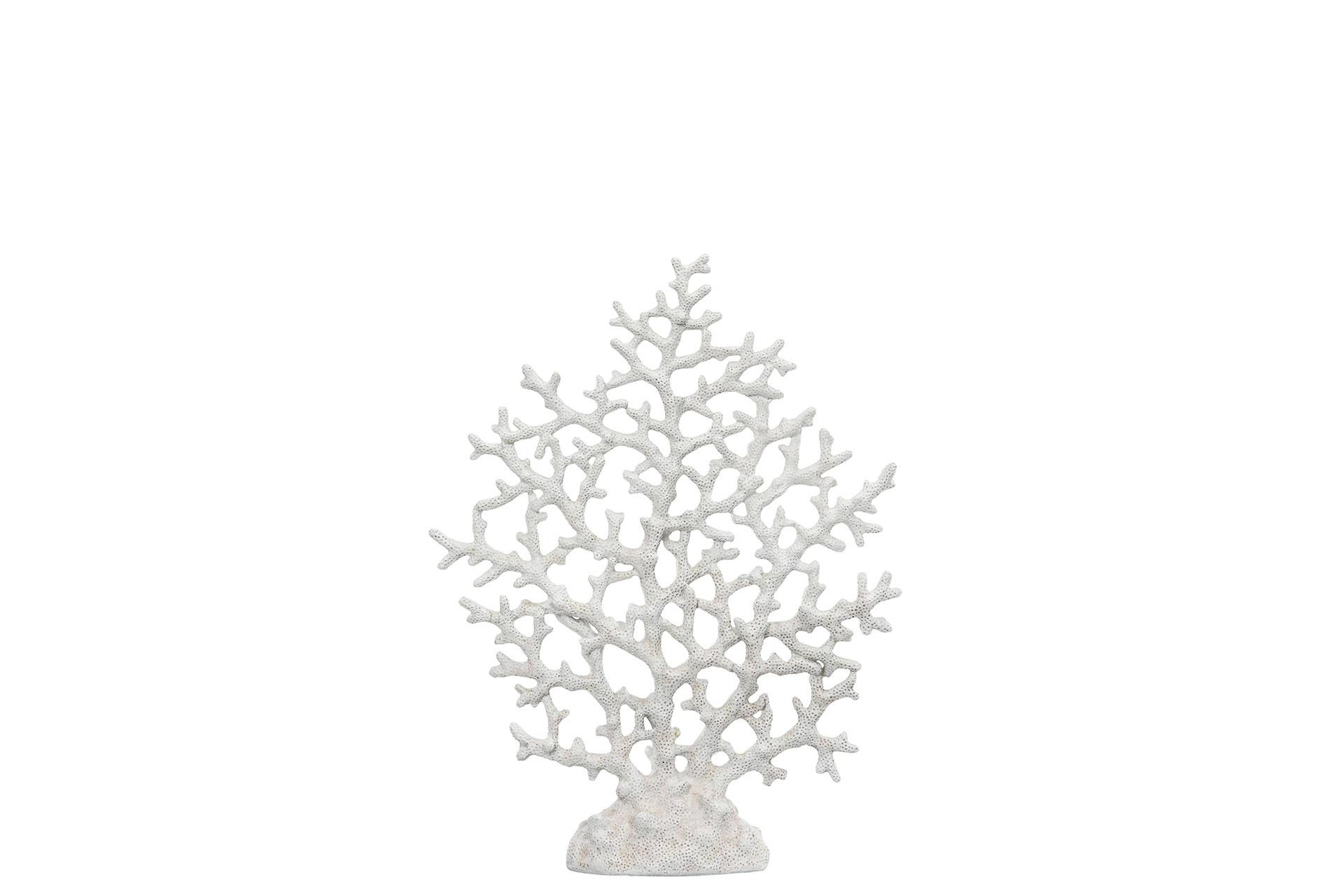 Korall stor, vit