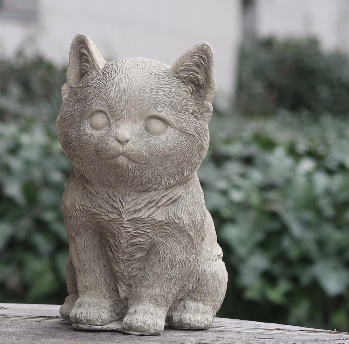 Kattunge sittande i betong