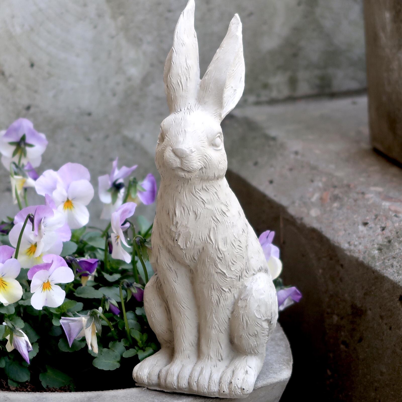 Kanin stående i betong