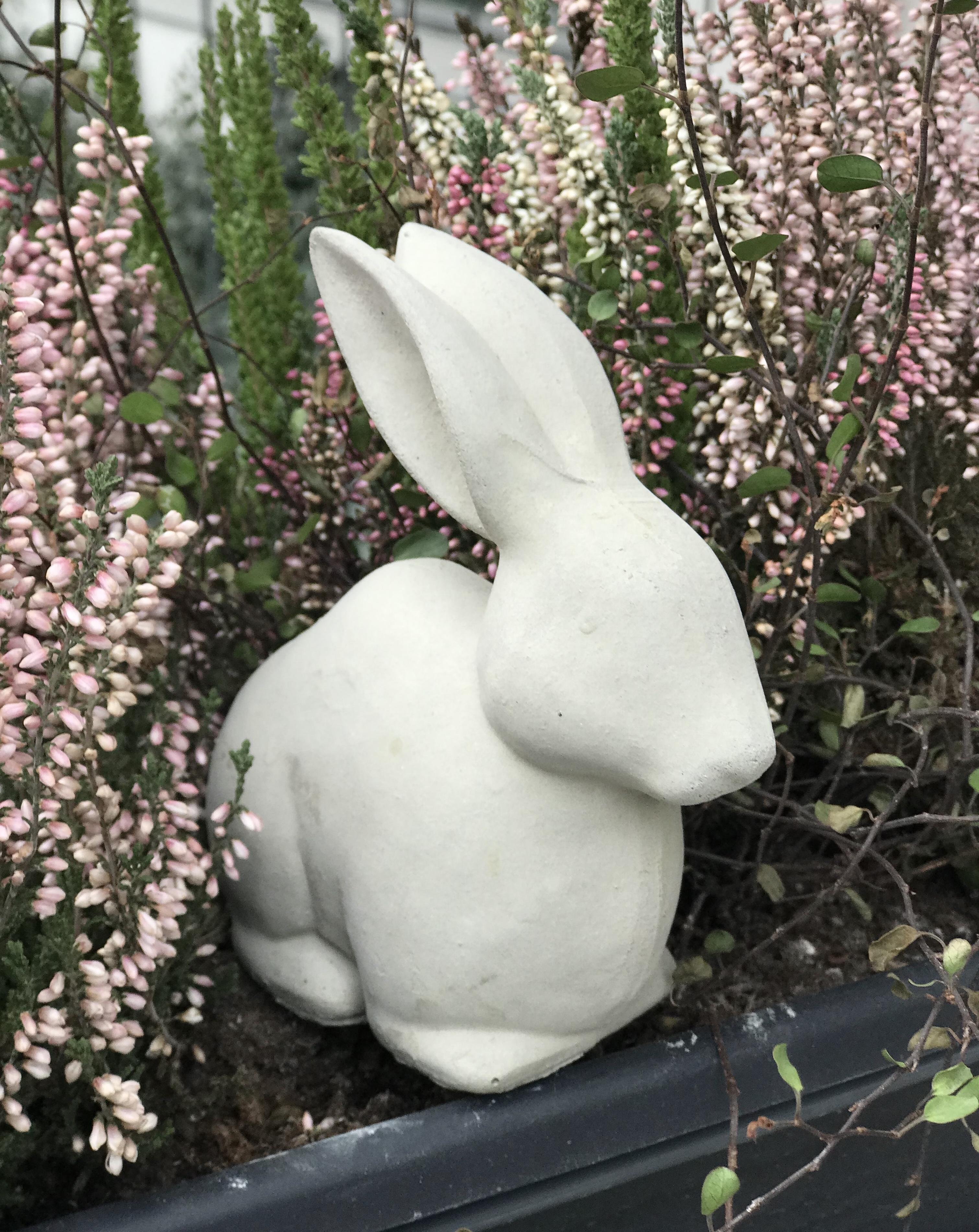 Kanin sittande enkel  i betong