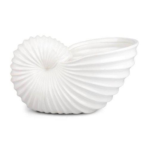 Snäckvas vit stor