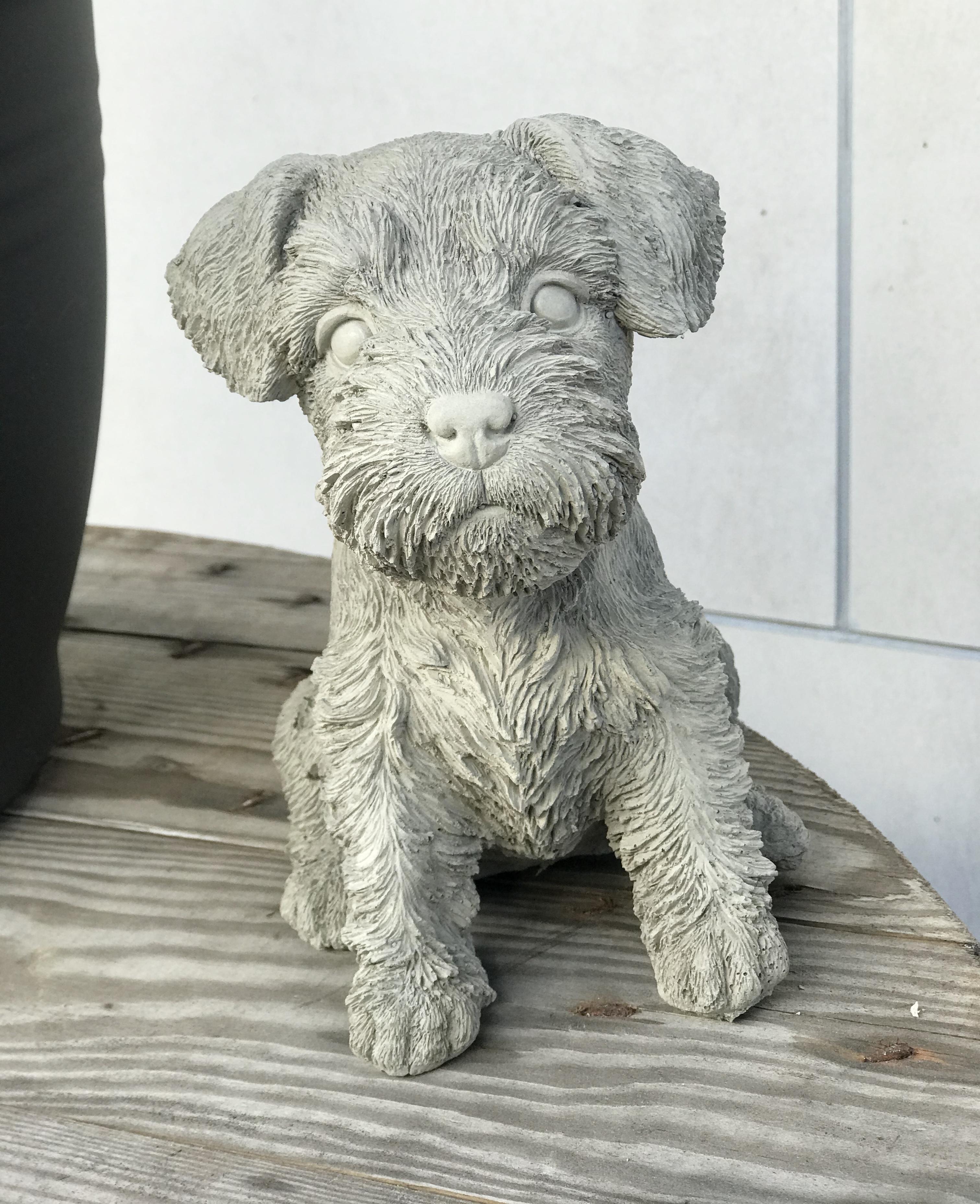 Hund Schnauzer i betong