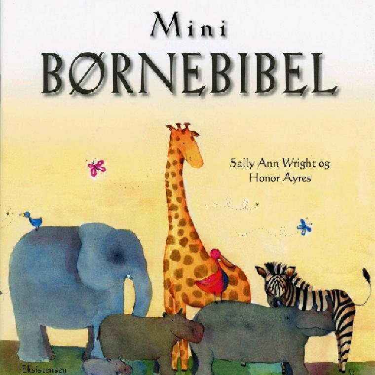 Mini børnebibel af Sally Ann Wright