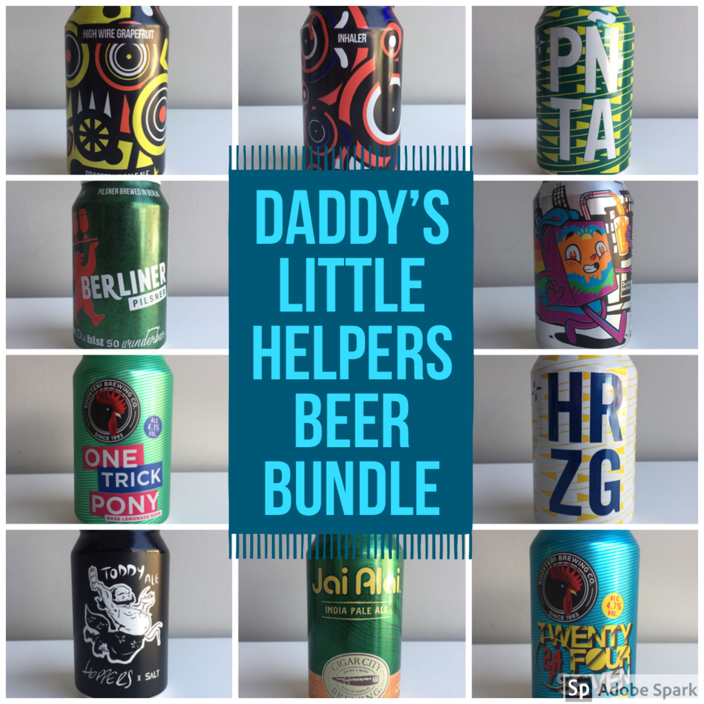 Daddy's little helpers - selection of 12 craft beers 330ml cans