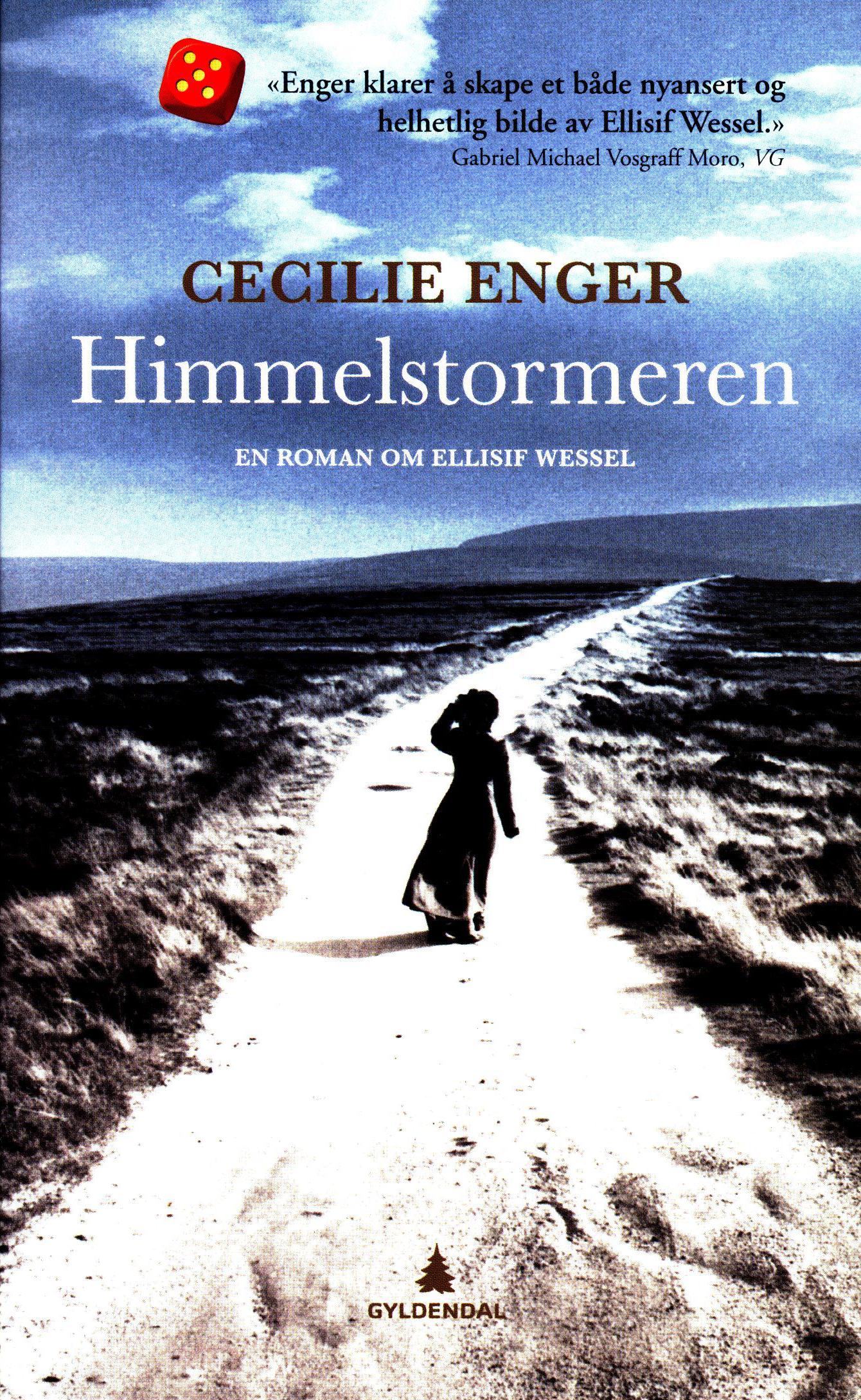 Cecilie Enger: Himmelstormeren - En roman om Ellisif Wessel