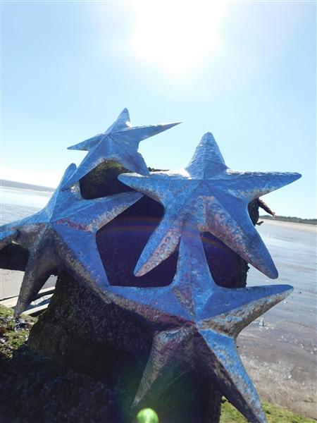 Wall Art: Tin Cushion Sea Stars 53cm SALE 25% (£29.95)