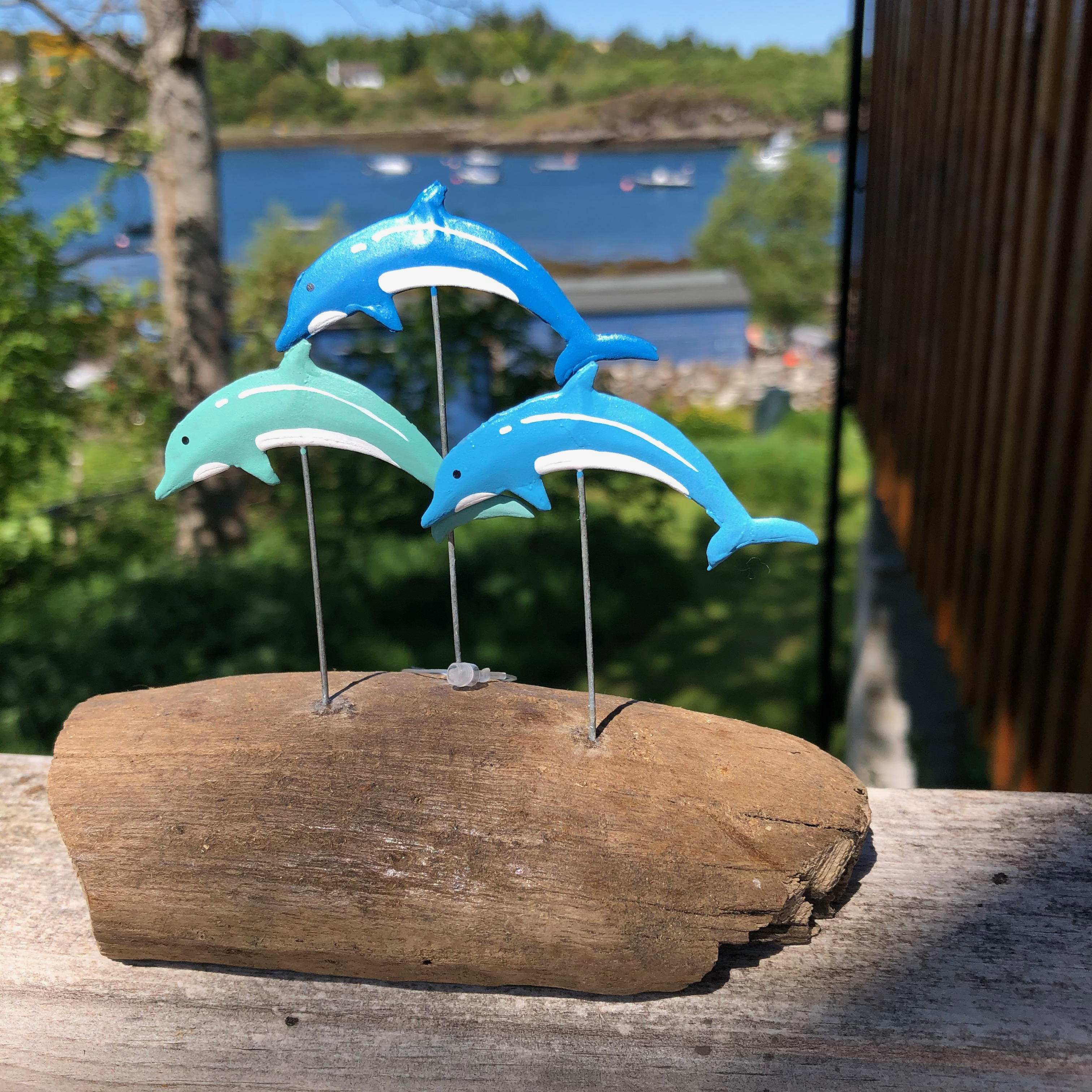 Dolphins on Driftwood