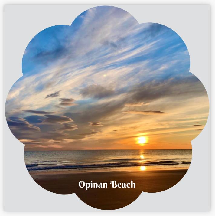 L57 Flower Shaped Coaster: Opinan Beach Sunset