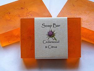 Soap Bar: Cedarwood & Citrus