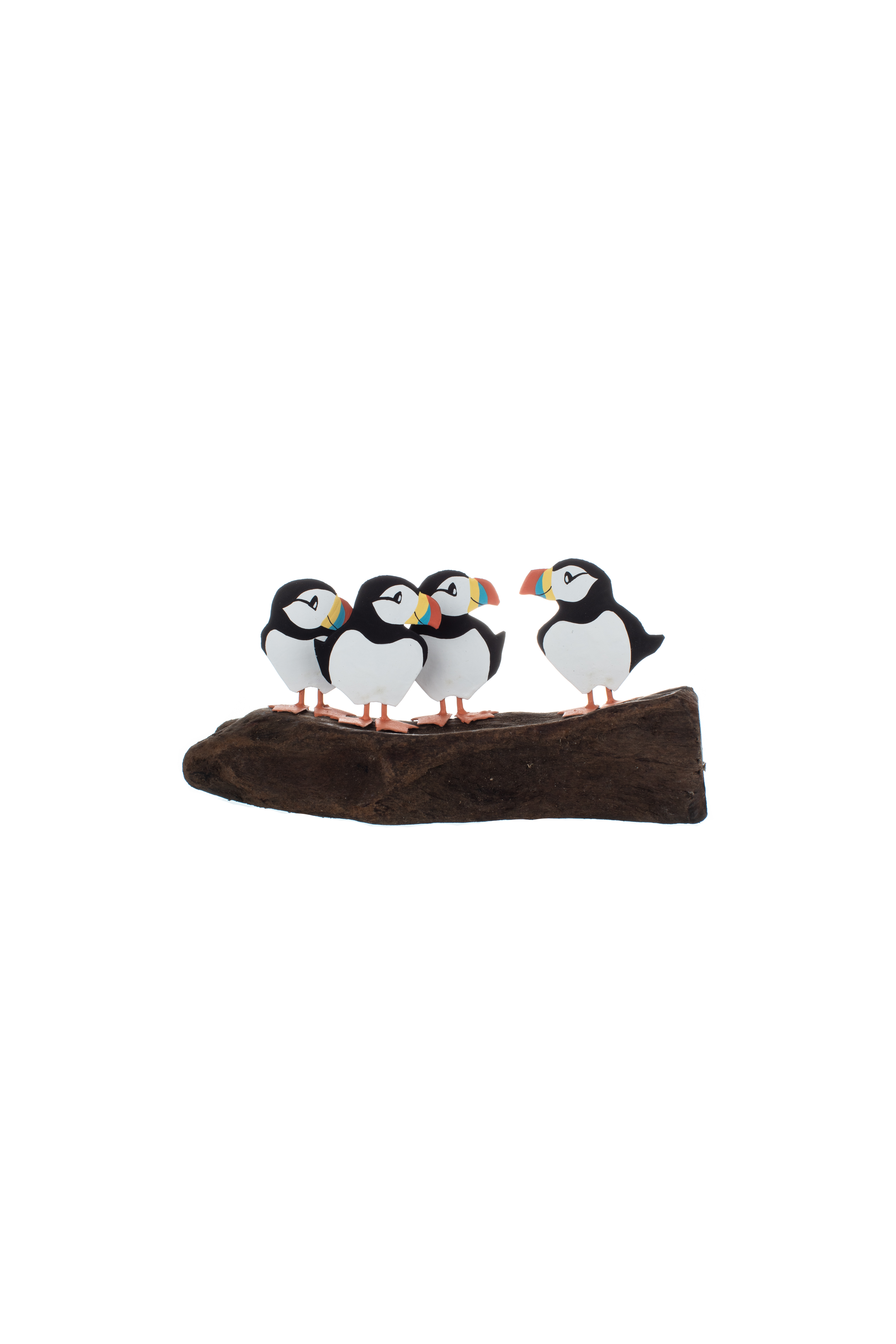 Circus of 4 Puffins on Driftwood