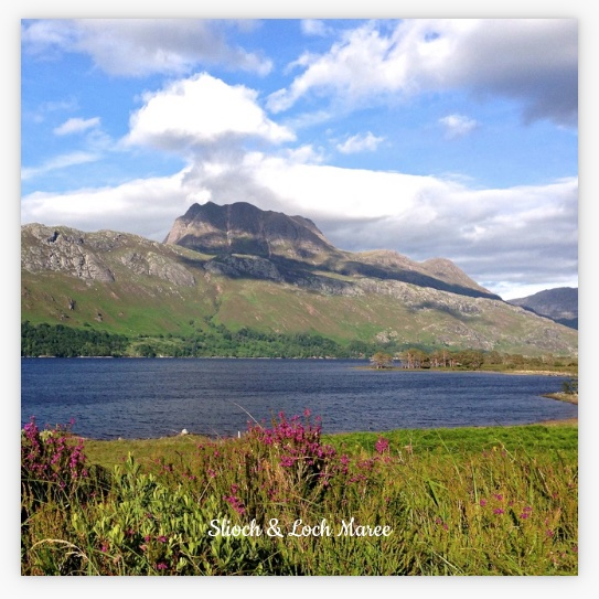 New Style L57 Coaster: Loch Maree