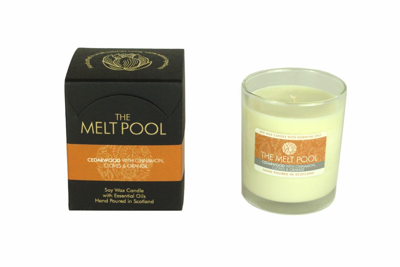 The Melt Pool Candle: Cedarwood, Cinnamon