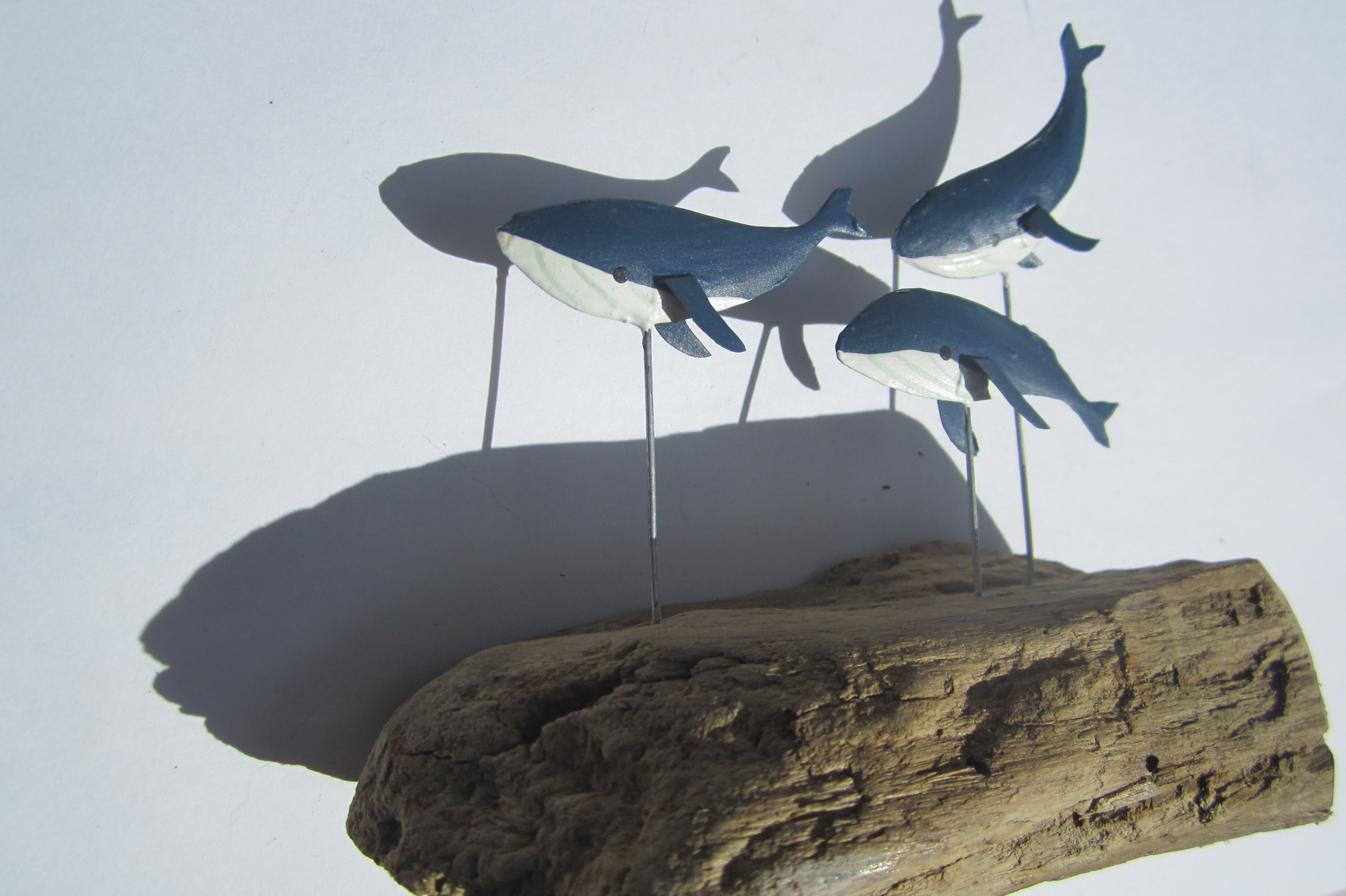 Whales on Driftwood Blue