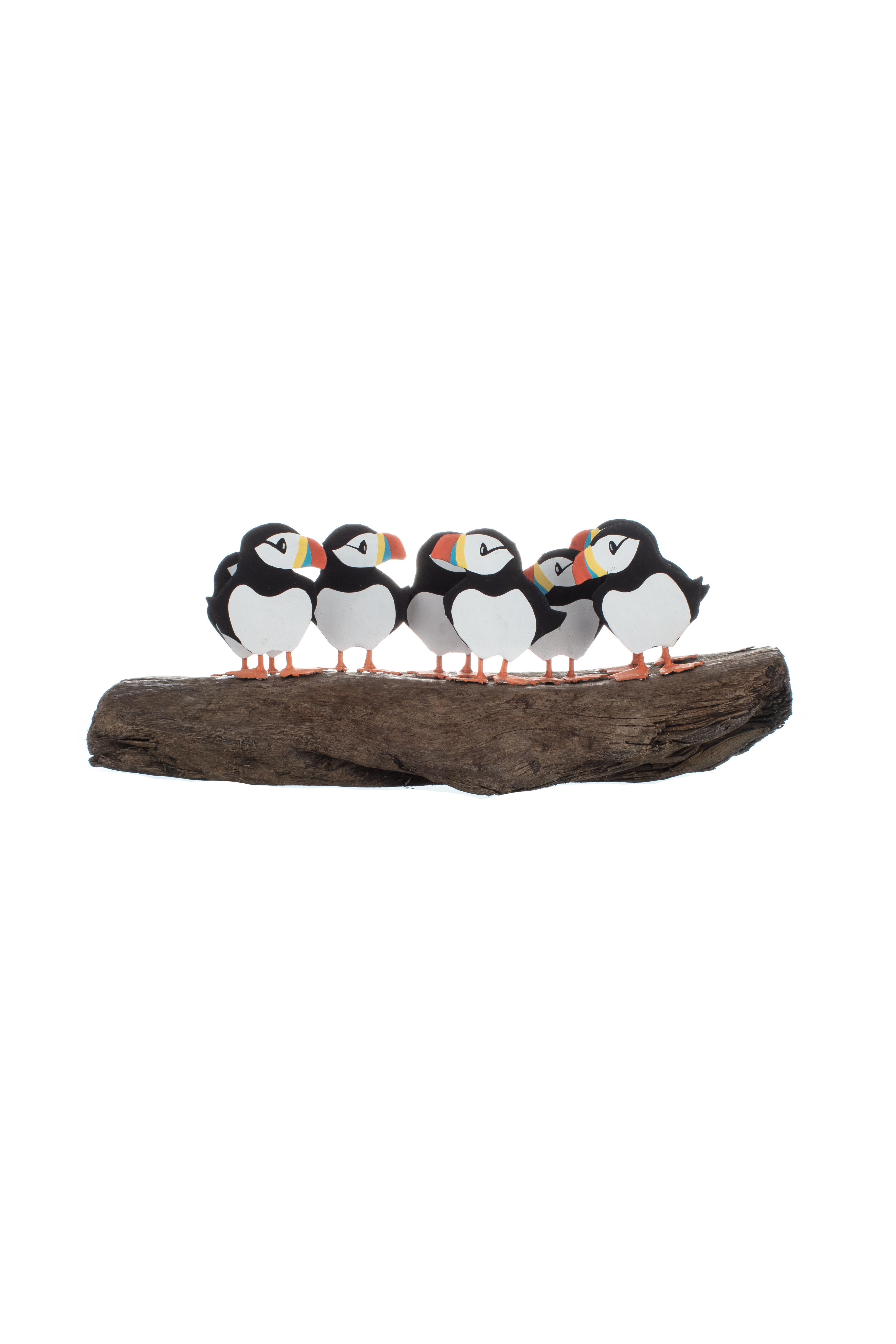 Circus of 8 Puffins on Driftwood
