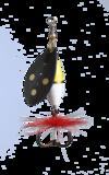 Myran wipp gu/vi 10g svart