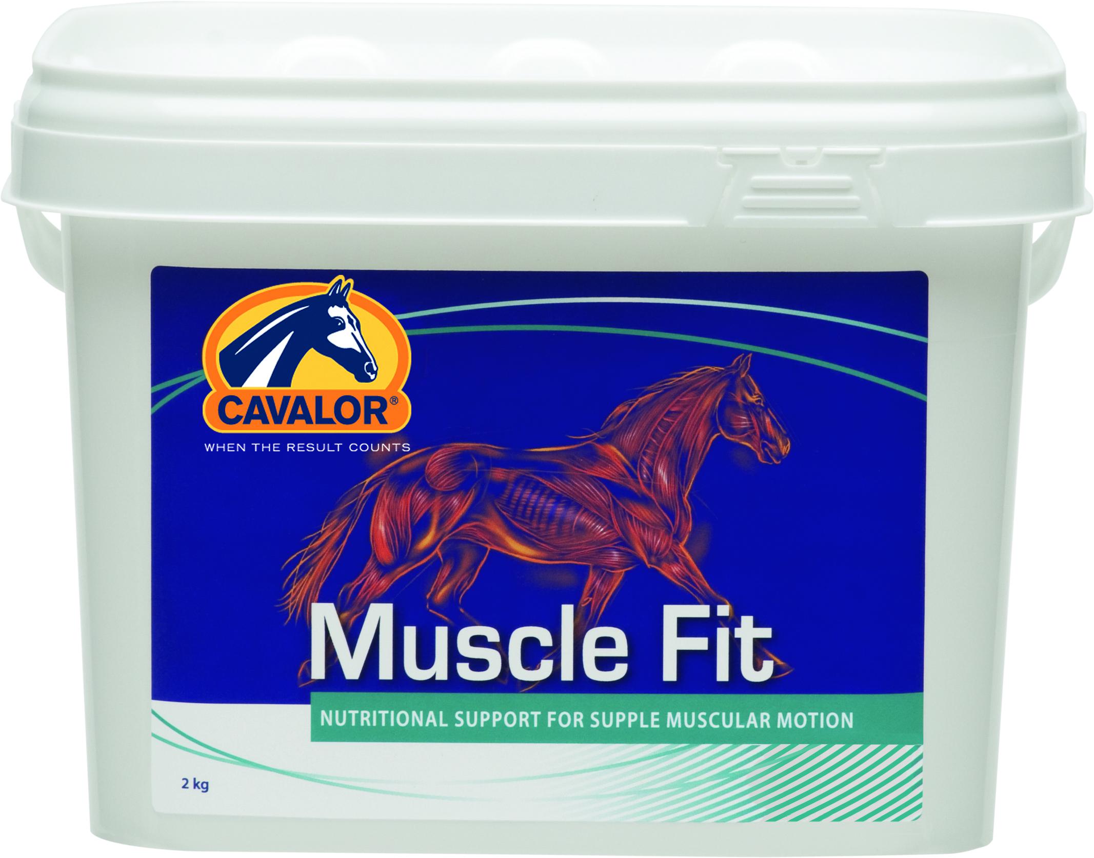 MuscleFit