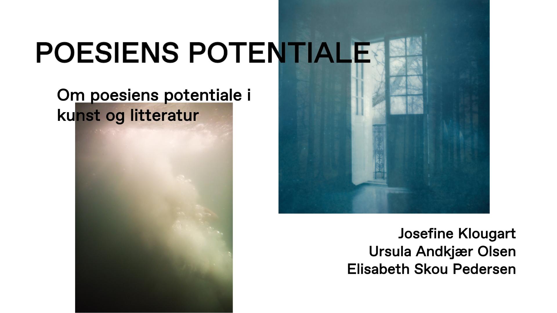 Event: Poesiens potentiale