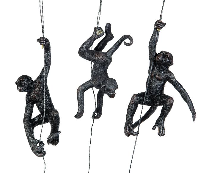 Apor hängande (REA)