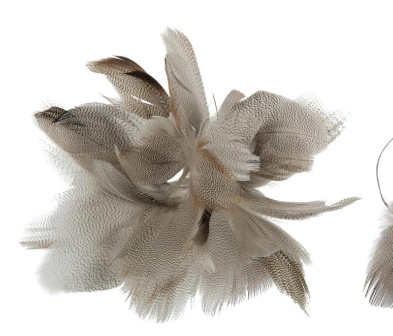 Fjädrar sicksack