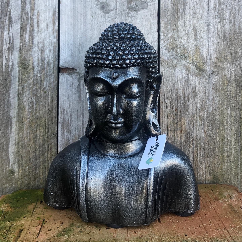 Buddhabyst