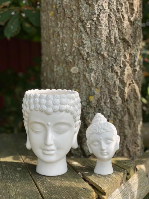 Buddhavas från Majas Lyktor