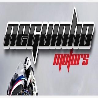 NEGUINHO MOTORS LTD