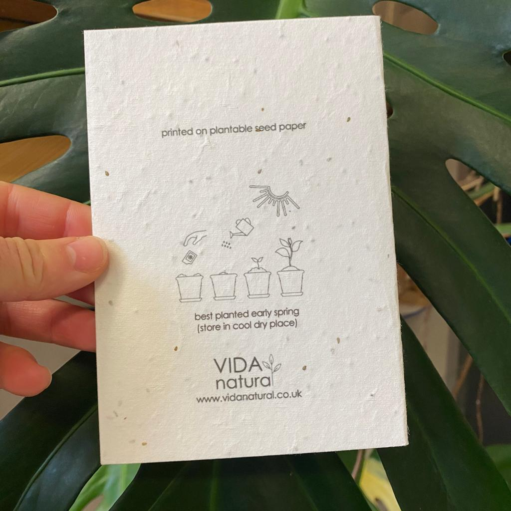 Home Sweet Home   Plantable Seed Paper Cards