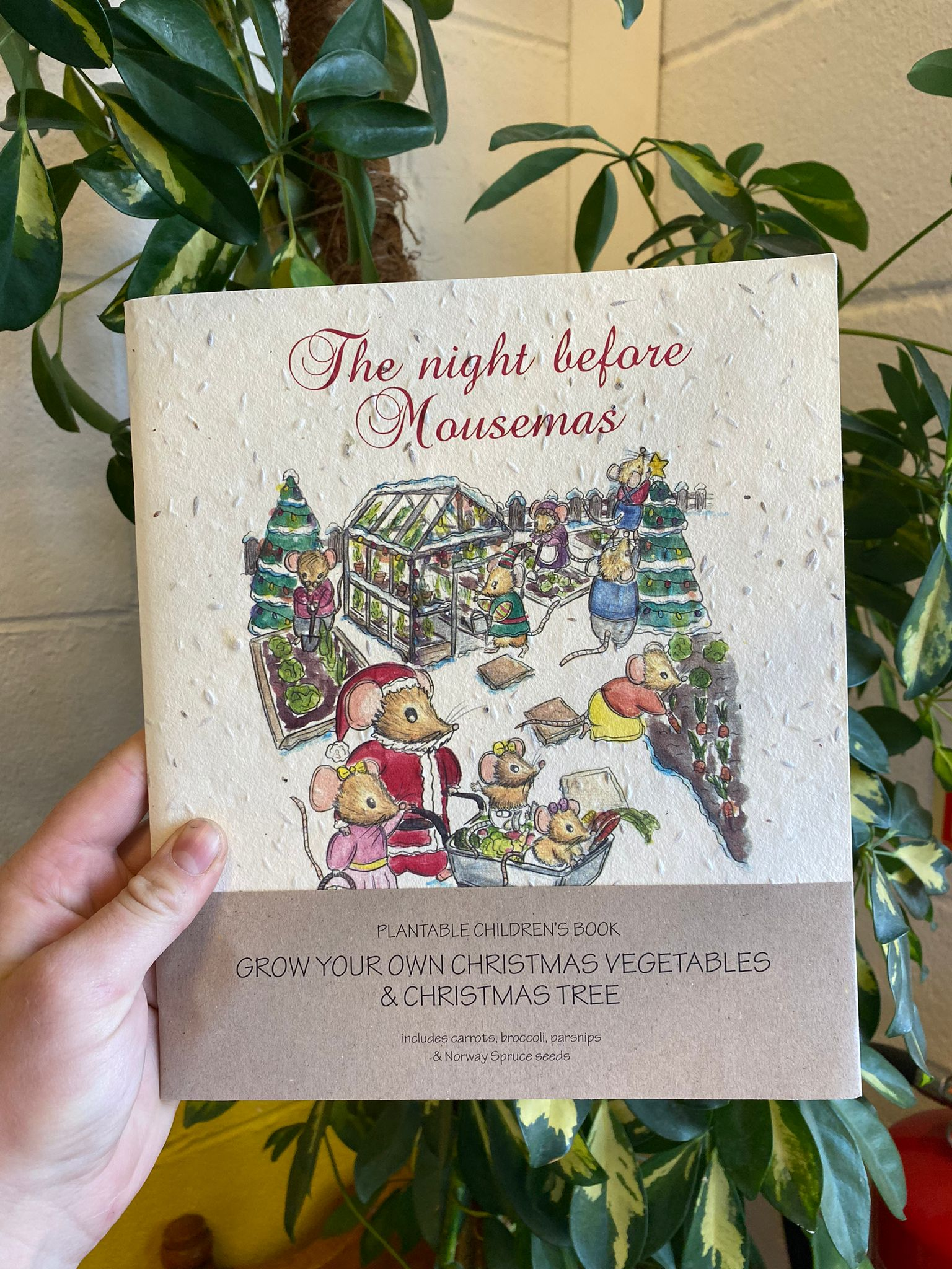 The Night Before Mousemas | Plantable Children's Book