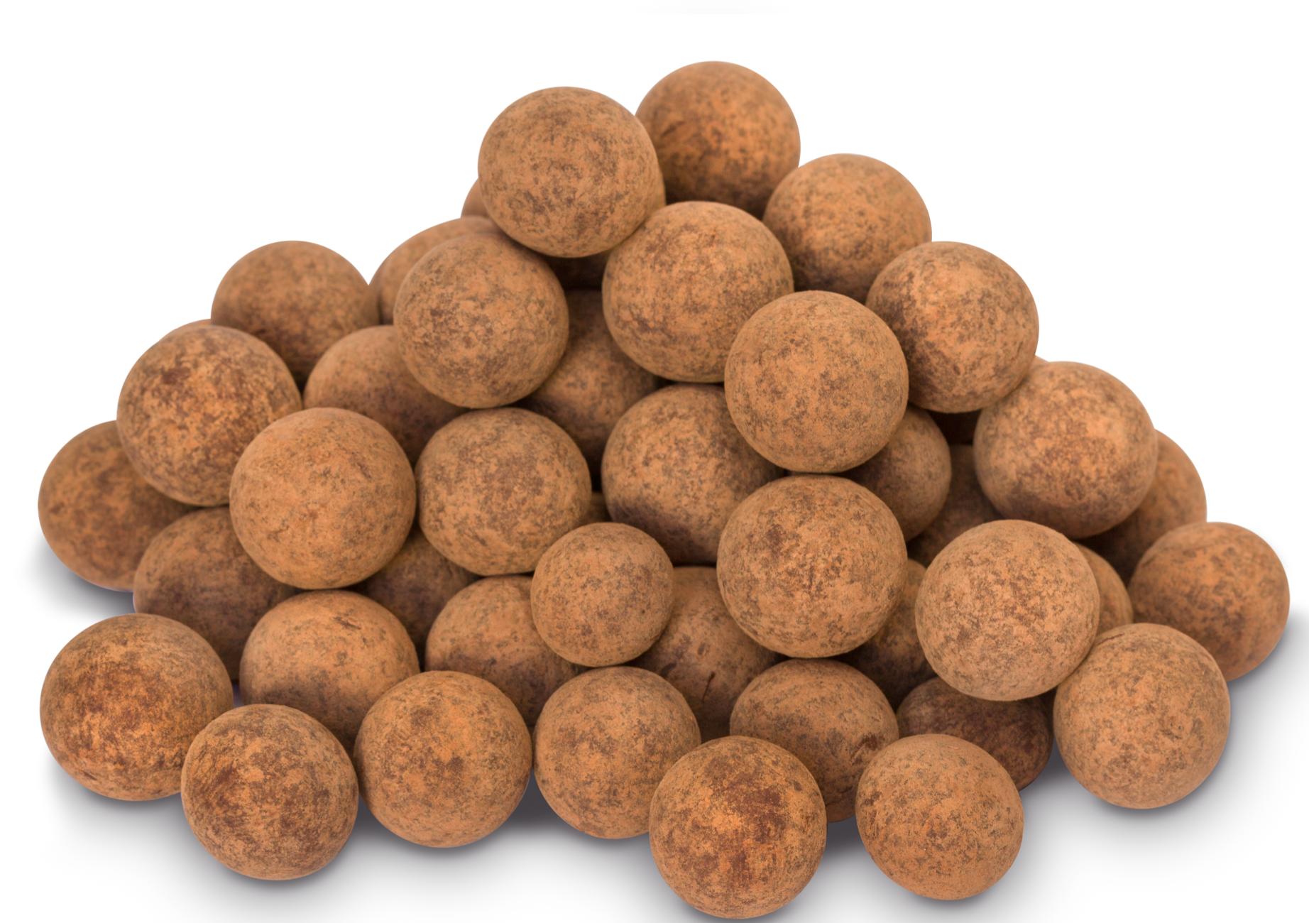 Raw Chocolate Salted Hazelnuts | Raw Chocolate Company