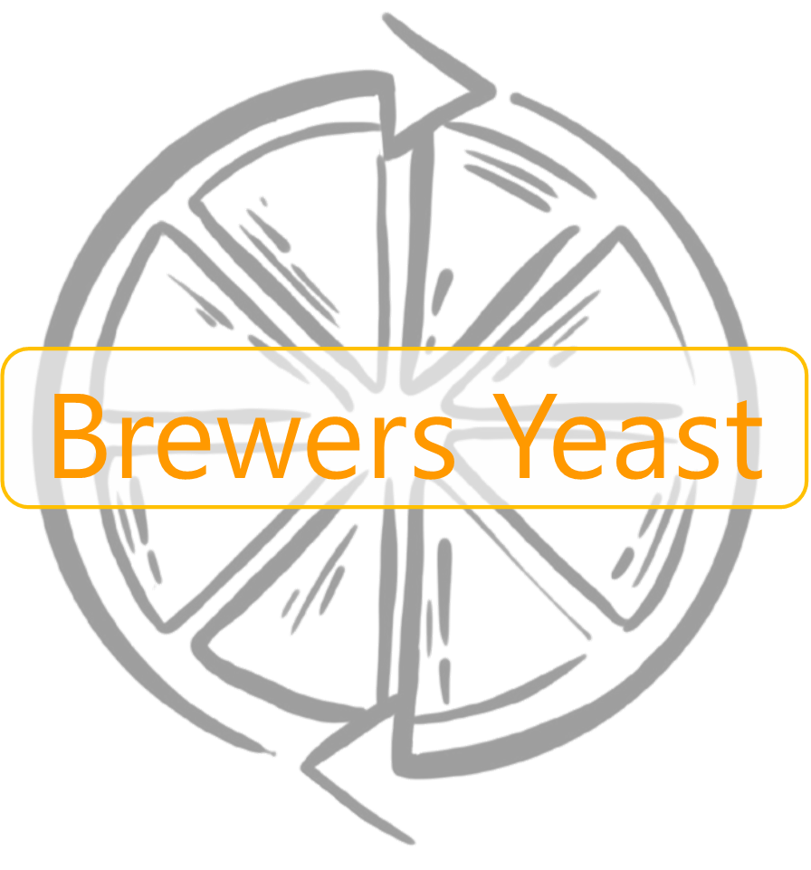 Brewers Yeast 50g (3 Per Order Only)