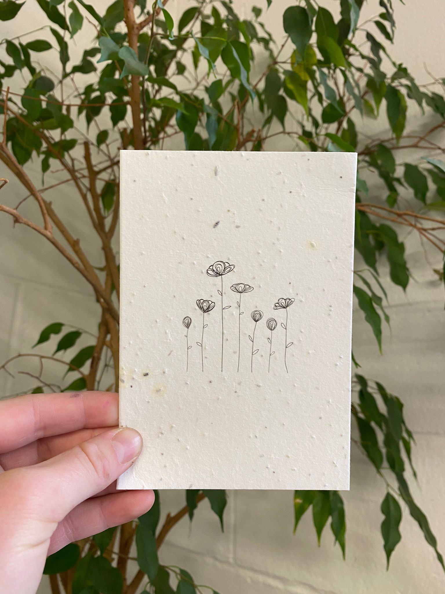 Black Flowers   Plantable Cards