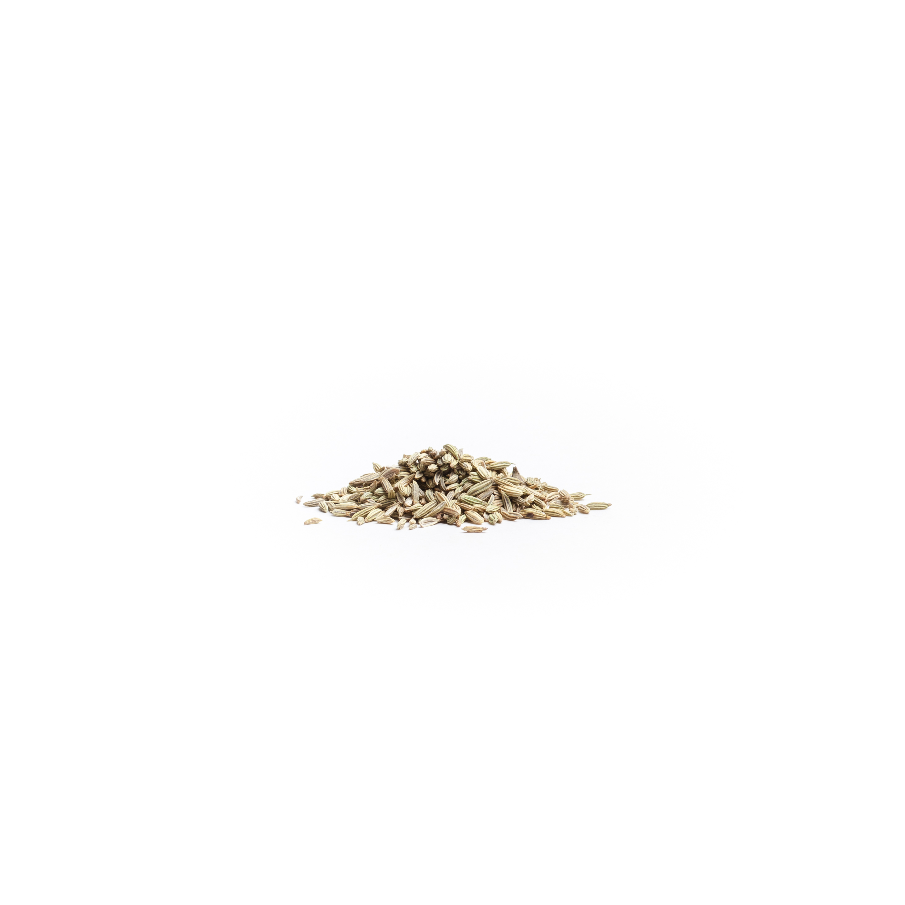 Fennel: Seed