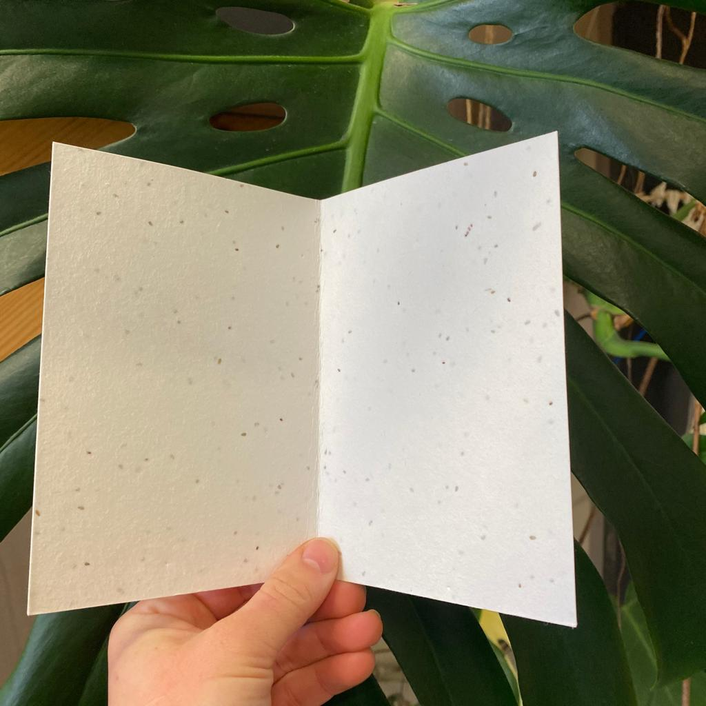 Happy Birthday | Plantable Seed Paper Cards