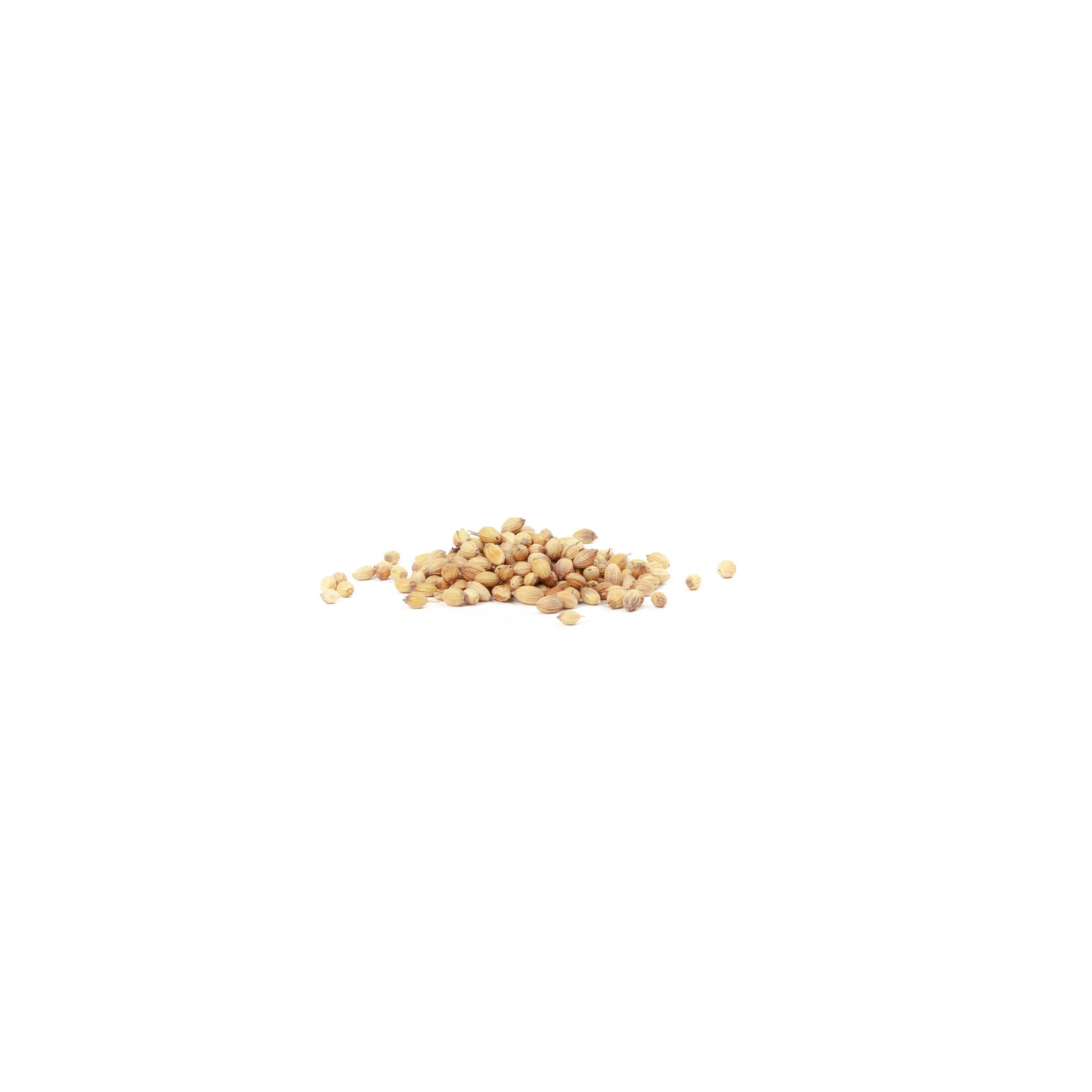 Coriander: Seeds