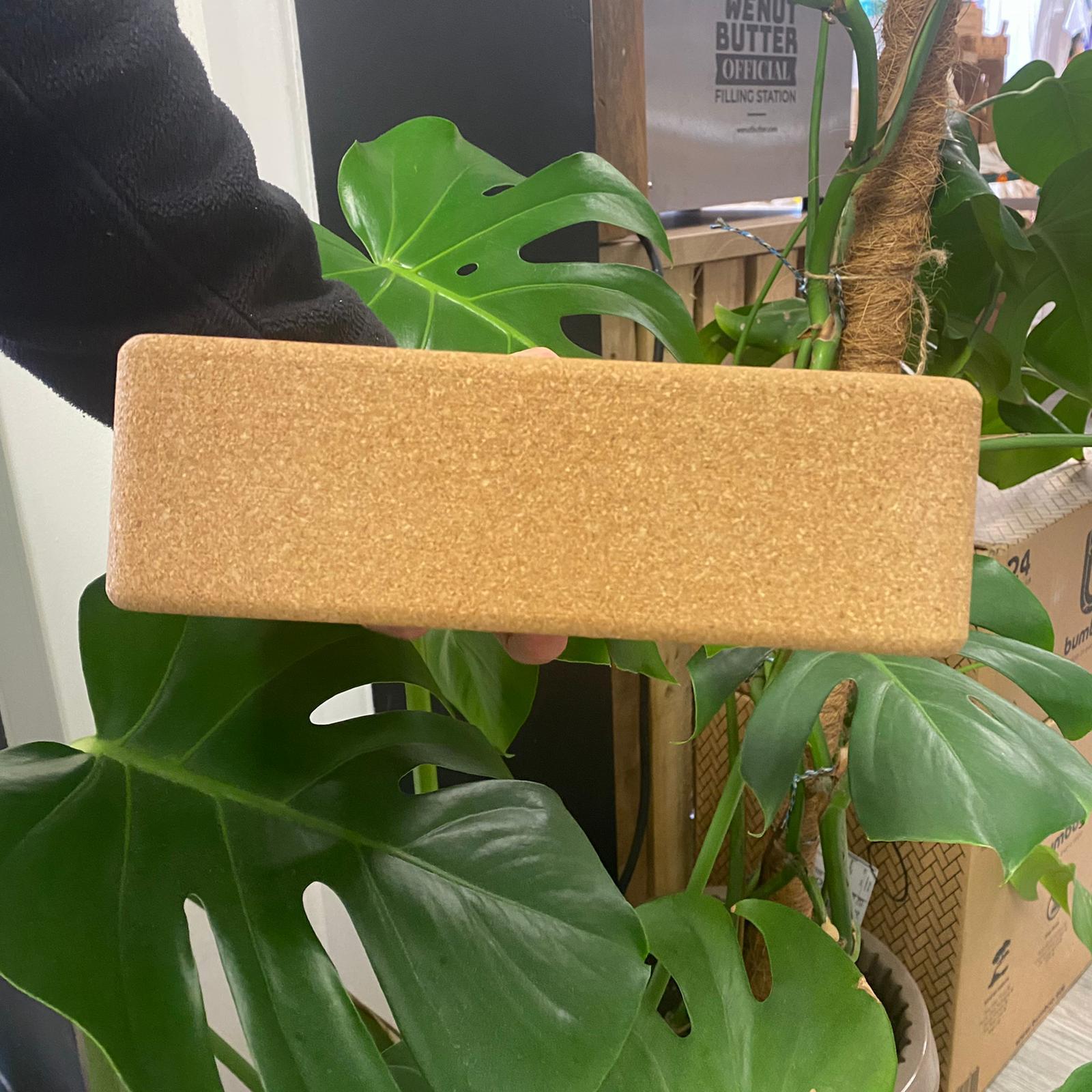 Cork Yoga Blocks | Evergreen Yogi