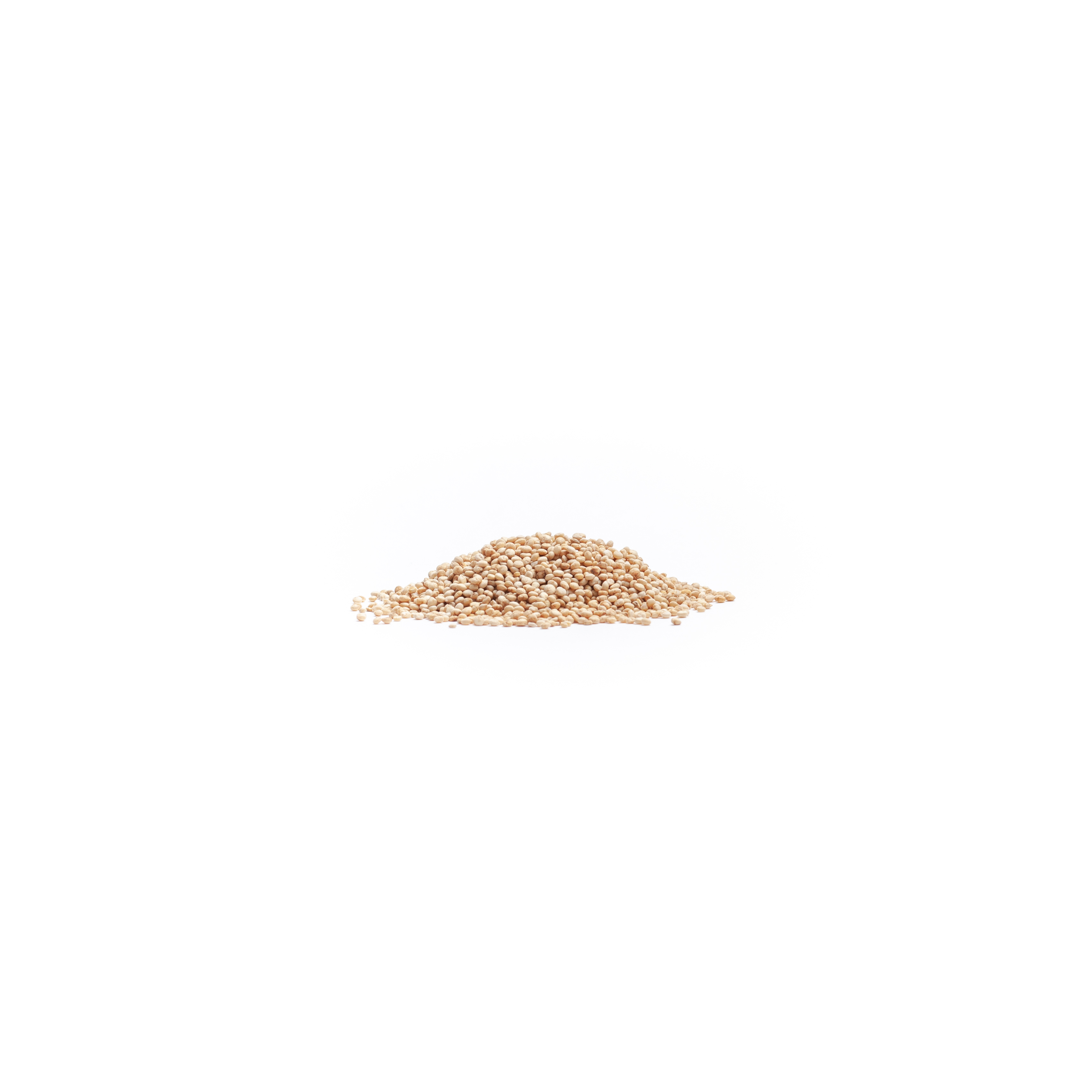Quinoa: Wholegrain | Hodmedod's