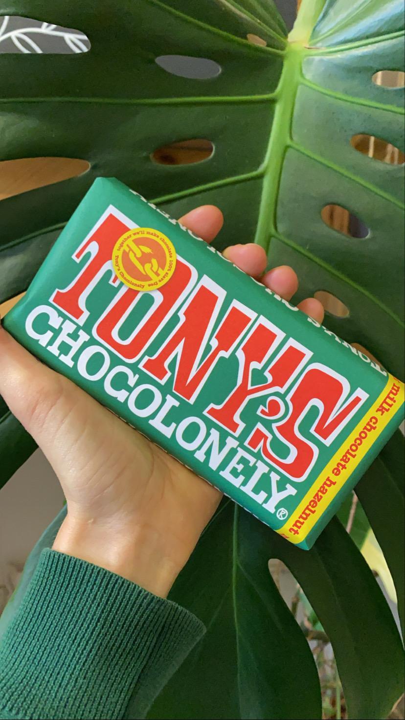 Milk Hazelnut 32% | Tony's Chocolonely