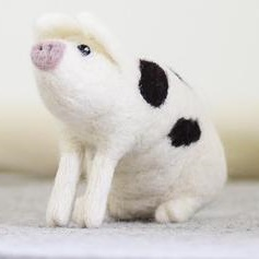 Gloucester Old Spot Pig Large Needle Felting Kit