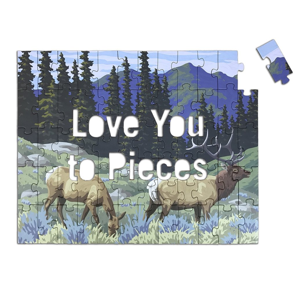 Love You To Pieces Hidden Message Puzzle