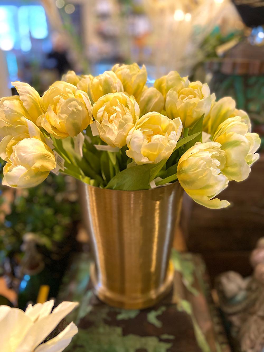 Mr Plant Tulppaani keltainen