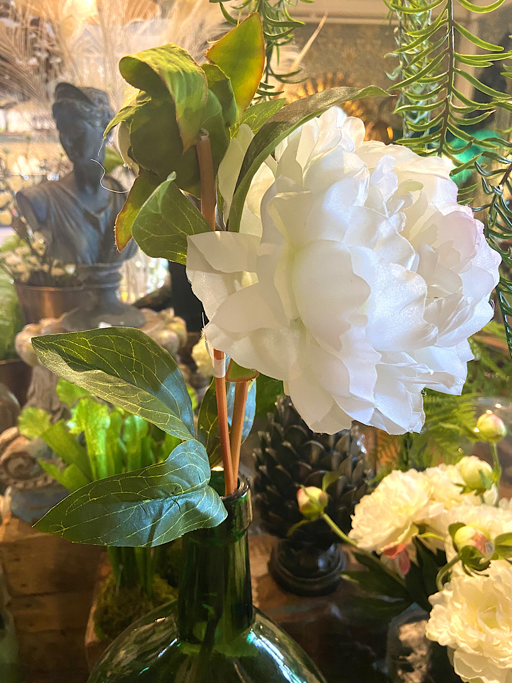 Mr Plant Pioninoksa pitkä valkoinen