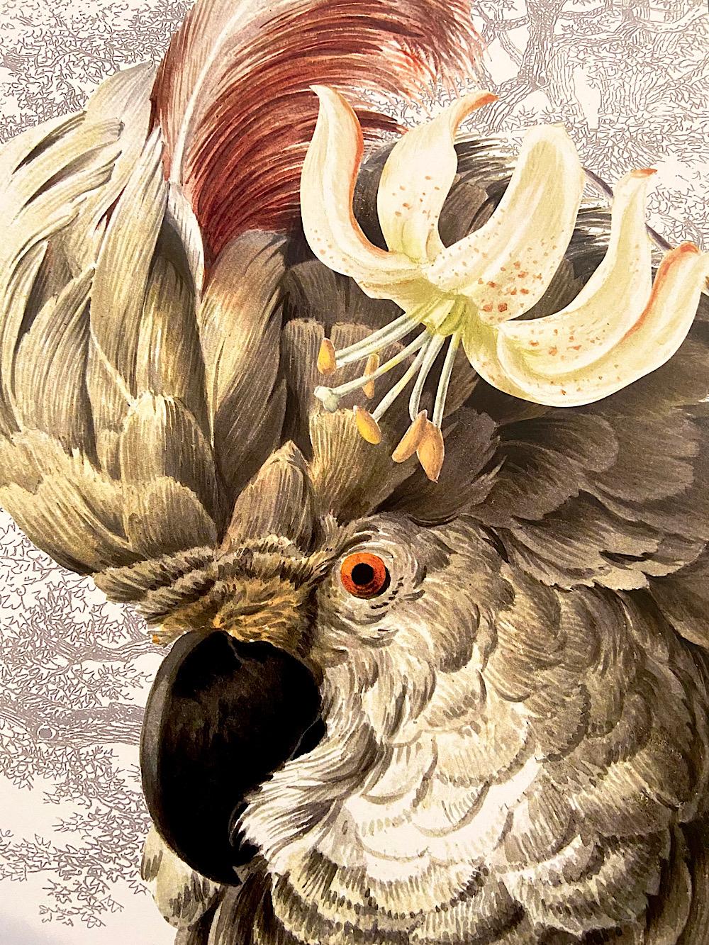 Vanilla Flyn juliste 30x40cm Kakadu